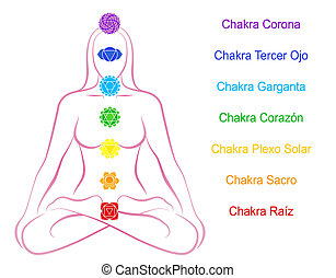 Seven main chakras beaded along the corresponding body regions of a meditating woman. Vector illustration over white background. Spanish labeling!