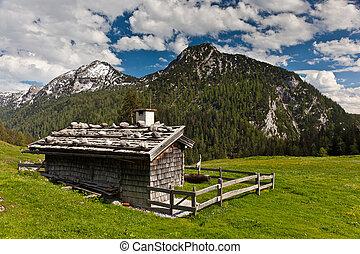 chalet, alpe