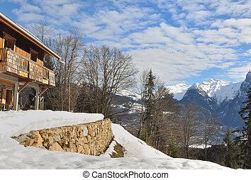 chalet, alpin
