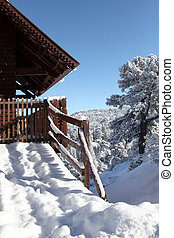 Chalet covered in snow