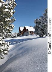 chalet, neigeux