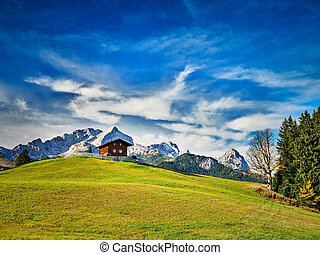 Chalet on a meadow at the mountain Eckbauer with alps