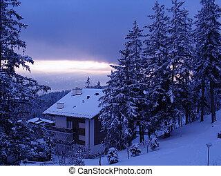 chalet, ski