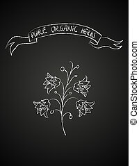 chalk flower on blackboard