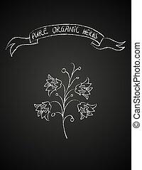 chalk flower on blackboard