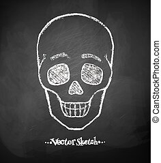 Chalkboard drawing of skull.
