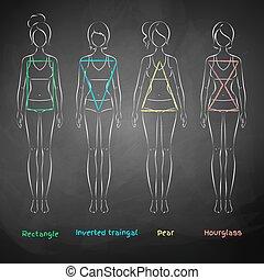 Chalked female body types