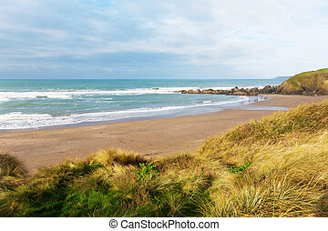 Challaborough beach Devon England