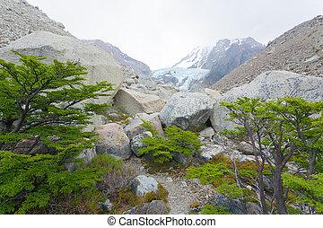 chalten, patagonia, el, vista, glaciar, piedras, blancas