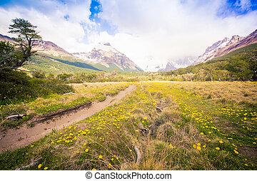 chalten, rastro, argentina, excursionismo, el