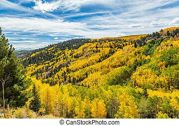 Chama to Antonito - Beautiful mountain scenery with streams,...