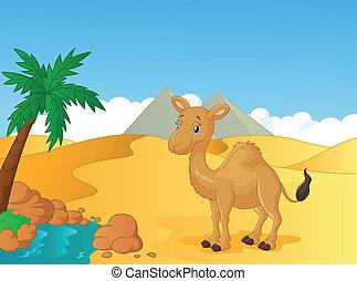 chameau, dessin animé, désert, backgroun