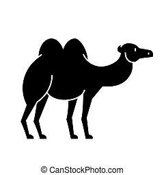 chameau, illustration, isolé, signe, vecteur, fond, icône