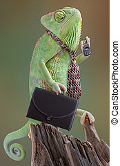 Chameleon Businessman - A chameleon businessman is calling...