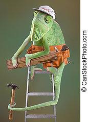 Chameleon Carpenter - A chameleon is dressed as a carpenter...