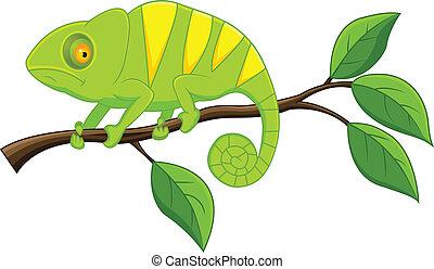Chameleon cartoon