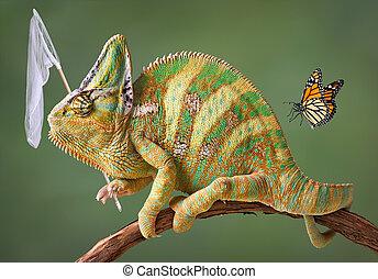 Chameleon catching butterflies