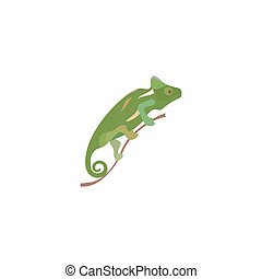 Chameleon colorful icon in flat style isolated on white background. Vector