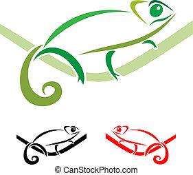 chameleon - Chameleon on a white background, vector