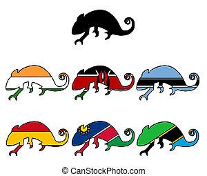 Chameleon flags