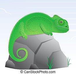 Chameleon lizard cartoon