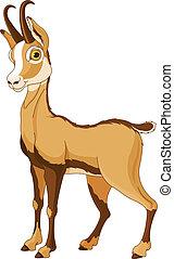 Chamois (Rupicapra) - Cartoon illustration of Chamois...