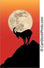 Chamois silhouette in front of the moon on the rock