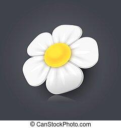 chamomile, ícone