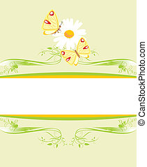 Chamomile and butterflies. Frame