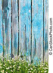 chamomile, bloemen, op, een, achtergrond, van, houten hek