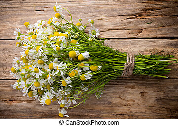 Chamomile. - Chamomile flowers on a wooden background....