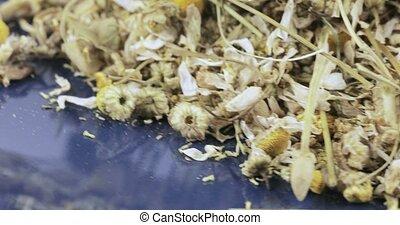 Chamomile drug bulk - Bulk crushed chamomile apothecary with...