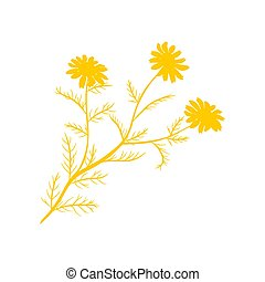 Chamomile flat icon isolated on white background vector illustration