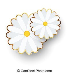Chamomile flatly with with a gold border on the petals.