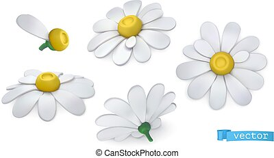 Chamomile flowers, daisies. 3d vector icon set