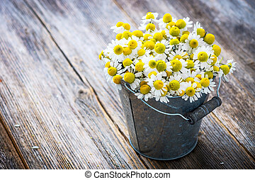 Chamomile flowers on wooden background