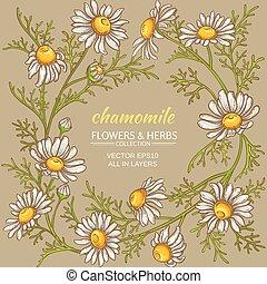 chamomile vector frame