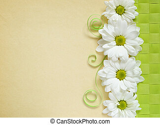Chamomiles on beige paper background - Chamomiles line...