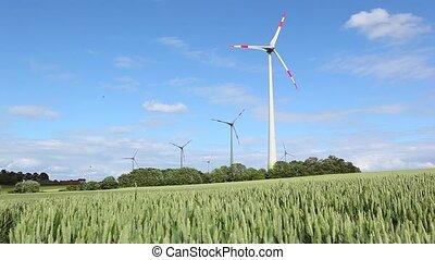 champ, blé, éolienne