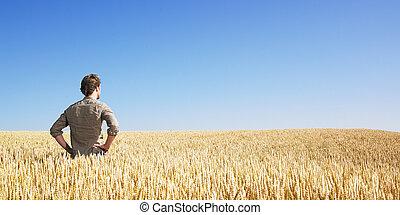 champ, blé, jeune homme