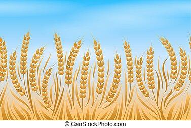 champ, blé, paysage, fond