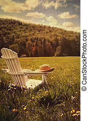 champ, chaise, herbe, adirondack, grand