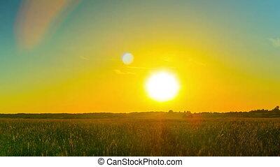 champ coucher soleil, chronocinématographie, sur,...