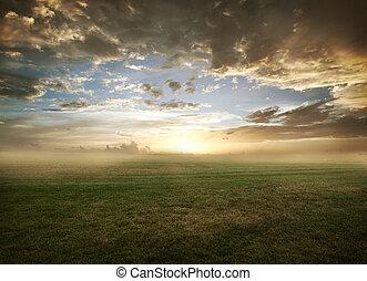champ, coucher soleil, herbeux