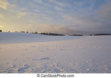 champ, coucher soleil, neige