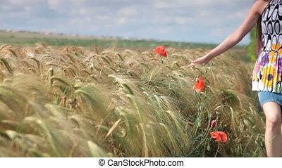 champ, femme, blé, coquelicots