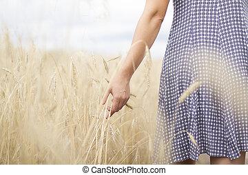 champ, femme, blé, coucher soleil