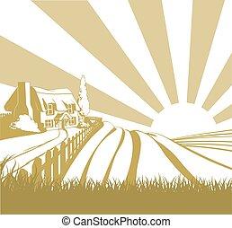 champ ferme, paysage