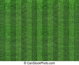 champ, football, herbe verte
