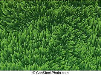 champ, herbeux, illustration, background-vector